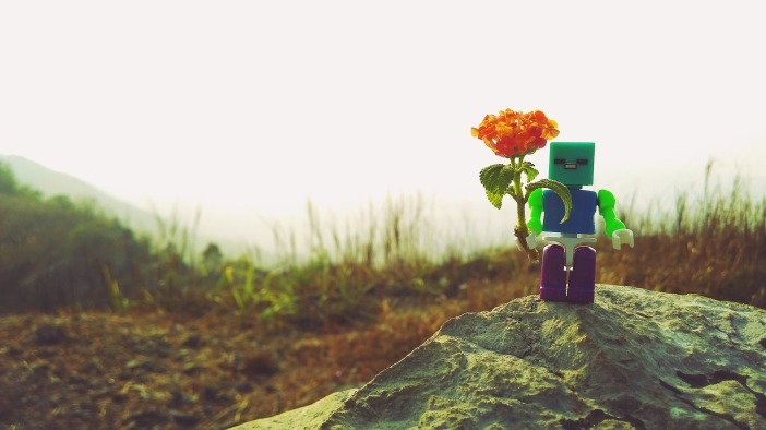 toys-991461_1920